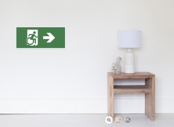 Accessible Means of Egress Icon Exit Sign Wheelchair Wheelie Running Man Symbol by Lee Wilson PWD Disability Emergency Evacuation Poster 38