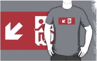 Accessible Means of Egress Icon Adult t-shirt 120