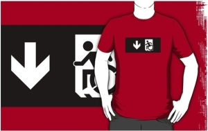 Accessible Means of Egress Icon Adult t-shirt 147