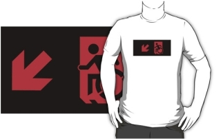 Accessible Means of Egress Icon Adult t-shirt 15