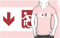 Accessible Means of Egress Icon Adult t-shirt 162