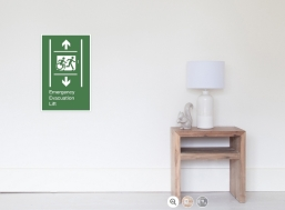 Accessible Means of Egress Icon Exit Sign Wheelchair Wheelie Running Man Symbol by Lee Wilson PWD Disability Emergency Evacuation Lift Elevator Poster 11