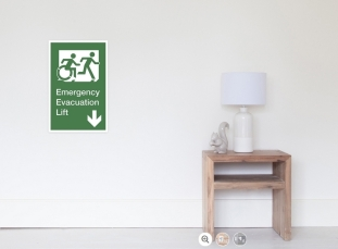 Accessible Means of Egress Icon Exit Sign Wheelchair Wheelie Running Man Symbol by Lee Wilson PWD Disability Emergency Evacuation Lift Elevator Poster 8