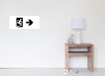 Accessible Means of Egress Icon Exit Sign Wheelchair Wheelie Running Man Symbol by Lee Wilson PWD Disability Emergency Evacuation Poster 112