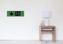 Accessible Means of Egress Icon Exit Sign Wheelchair Wheelie Running Man Symbol by Lee Wilson PWD Disability Emergency Evacuation Poster 123