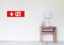 Accessible Means of Egress Icon Exit Sign Wheelchair Wheelie Running Man Symbol by Lee Wilson PWD Disability Emergency Evacuation Poster 13