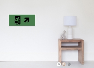 Accessible Means of Egress Icon Exit Sign Wheelchair Wheelie Running Man Symbol by Lee Wilson PWD Disability Emergency Evacuation Poster 15