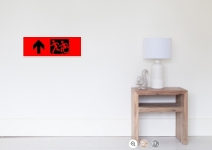 Accessible Means of Egress Icon Exit Sign Wheelchair Wheelie Running Man Symbol by Lee Wilson PWD Disability Emergency Evacuation Poster 19