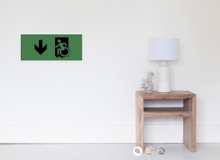 Accessible Means of Egress Icon Exit Sign Wheelchair Wheelie Running Man Symbol by Lee Wilson PWD Disability Emergency Evacuation Poster 22