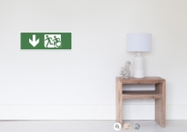 Accessible Means of Egress Icon Exit Sign Wheelchair Wheelie Running Man Symbol by Lee Wilson PWD Disability Emergency Evacuation Poster 50