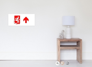 Accessible Means of Egress Icon Exit Sign Wheelchair Wheelie Running Man Symbol by Lee Wilson PWD Disability Emergency Evacuation Poster 58