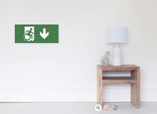 Accessible Means of Egress Icon Exit Sign Wheelchair Wheelie Running Man Symbol by Lee Wilson PWD Disability Emergency Evacuation Poster 72