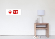 Accessible Means of Egress Icon Exit Sign Wheelchair Wheelie Running Man Symbol by Lee Wilson PWD Disability Emergency Evacuation Poster 76