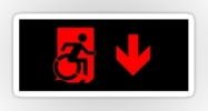 Accessible Means of Egress Icon Exit Sign Wheelchair Wheelie Running Man Symbol by Lee Wilson PWD Disability Emergency Evacuation Sticker 79