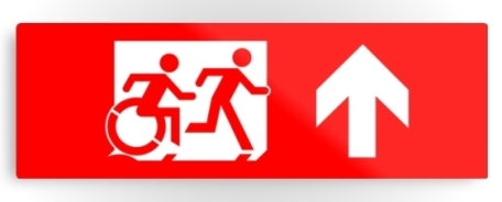 Accessible Means of Egress Icon Exit Sign Wheelchair Wheelie Running Man Symbol by Lee Wilson PWD Disability Evacuation Metal Printed 1