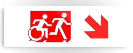 Accessible Means of Egress Icon Exit Sign Wheelchair Wheelie Running Man Symbol by Lee Wilson PWD Disability Evacuation Metal Printed 57