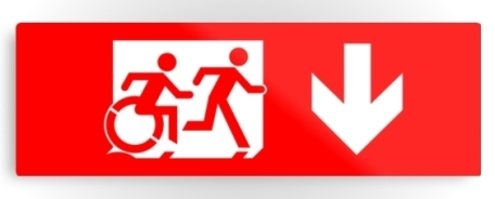 Accessible Means of Egress Icon Exit Sign Wheelchair Wheelie Running Man Symbol by Lee Wilson PWD Disability Evacuation Metal Printed 67