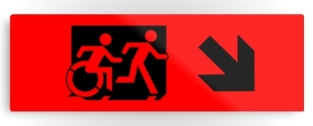 Accessible Means of Egress Icon Exit Sign Wheelchair Wheelie Running Man Symbol by Lee Wilson PWD Disability Evacuation Metal Printed 8
