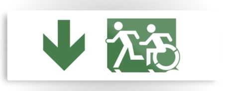 Accessible Means of Egress Icon Exit Sign Wheelchair Wheelie Running Man Symbol by Lee Wilson PWD Disability Evacuation Metal Printed 97